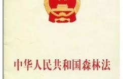 《中华人民共和国森林法》2019年12月28日修订通过,2020年7月1日施行插图