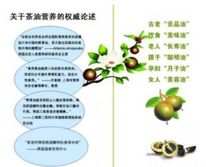 山茶油能患阿尔茨海默症?看专家解读插图(1)