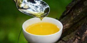 西莫普勒斯博士:不爱橄榄 更情有独钟中国茶油插图